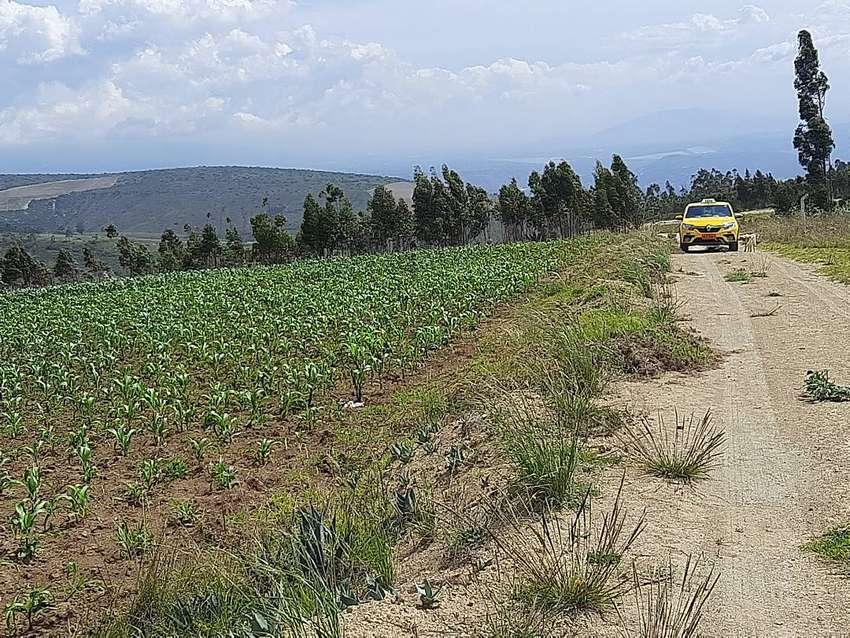Vendo 3 hectarias de terreno a 7$ el metronegociables todo o por hectarias en Malchingui a una hora de quito