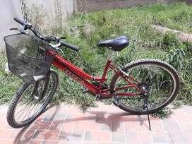 Bicicleta Box modelo dama