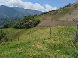 Finca de 162.5 hectáreas en 1590 millones