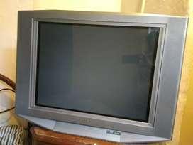 "Televisor 28"""