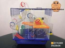 Jaula Hamster 17.