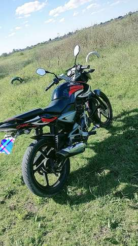 rouser 135 ls soy titular