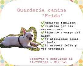 Guarderías canina