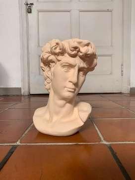 Maceta macetero cara david escultura