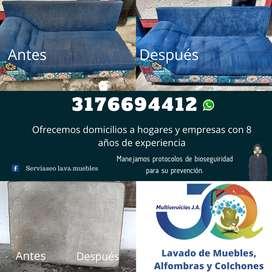 Lavado de Muebles Profesional en Ibagué