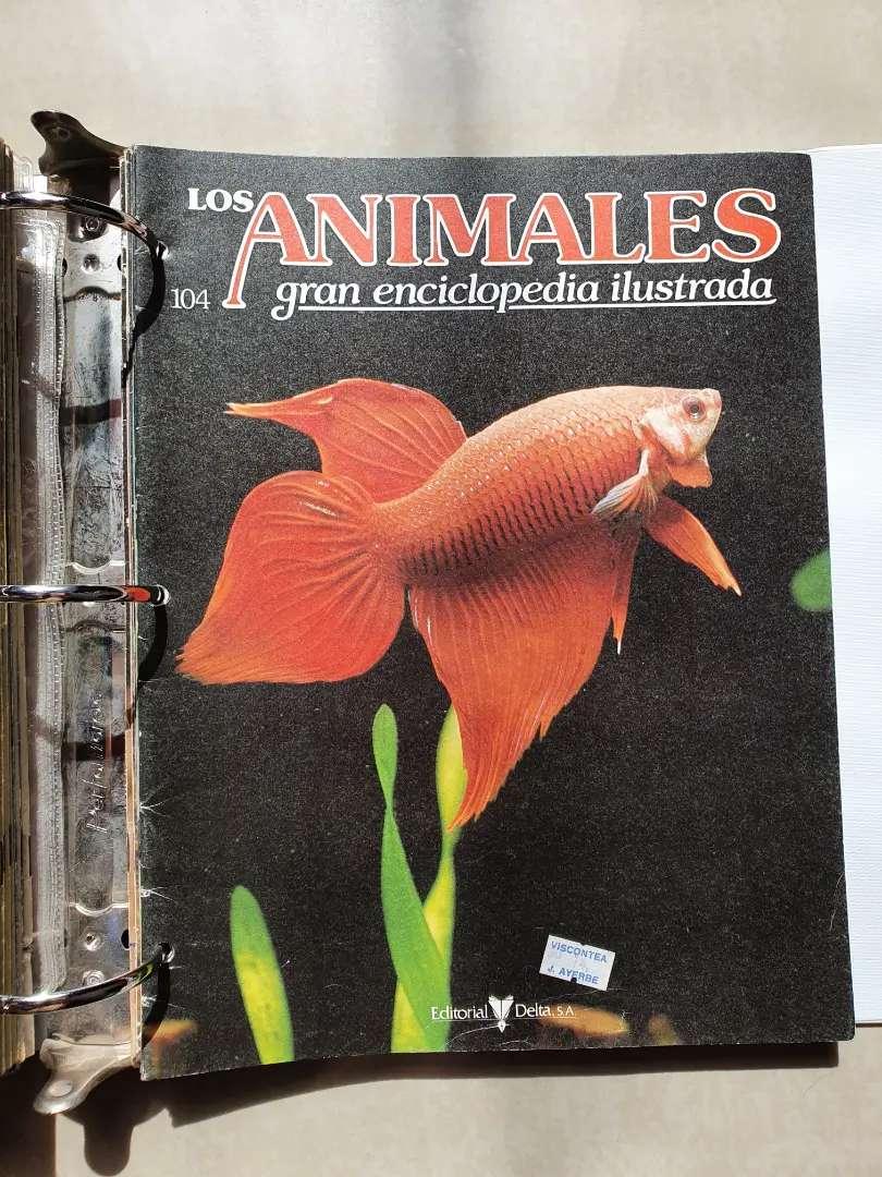 Enciclopedia los animales 0