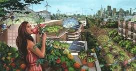 Soluciones Sustentables asistencia en permacultura