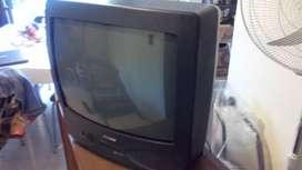 Vendo TV 21 pulgadas