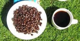 PLANTAS DE CAFE Y GUARANA