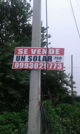 VENDO SOLAR EN SAN FRANCISCO DE CHIPEHAMBURGO