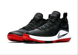 Zapatillas Nike LeBron Witness II N°40
