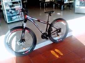 Bicicleta Todo Terreno Rin 29