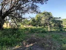 Vendo terreno 27 x50 zona monte Alto pegado a la quinta Biofar