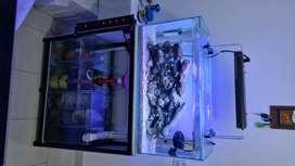 Venta acuario marino cartagena