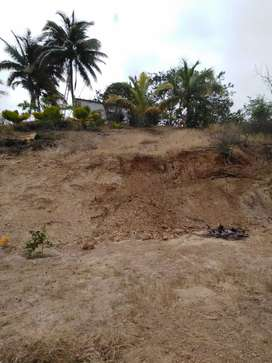 Se vende terreno en la entrada de san Jacinto antes de la caseta de serenazgo