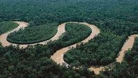 105 Hectareas de selva con alto potencial economico Iquitos