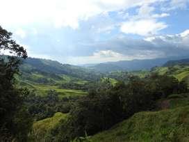 Lote Manizales - Villamaría, evite el virus, exelente vista, cerca a la ciudad