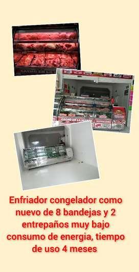 Congelador enfriador y equipos para carniceria