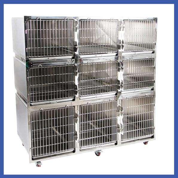 Jaulas Caniles Para Hospedaje Y Atención Veterinaria 0