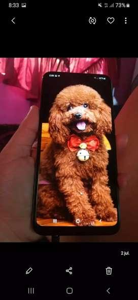 Mi celular A20