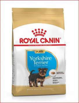 Royal canin Yorkshire terrier puppy CACHORRO 1.13 kg