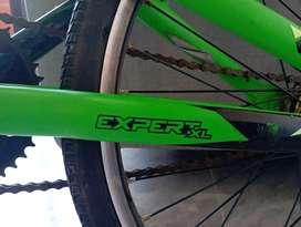 Vendo bici BMX xpert XL GW verde