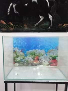 Vendo acuario con todos sus accesorios