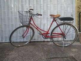 bicicleta marca Eastman (vintage)