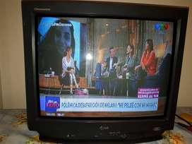 Televisor 29 Pulgadas Lg Modelo Cp 29k40 A Reparar C/remoto