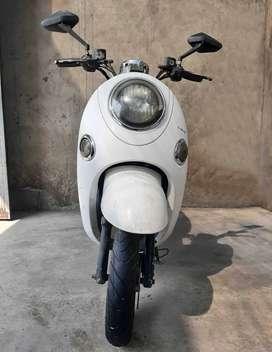 moto electrica greenline bellini