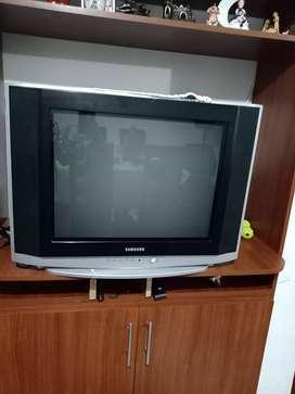 """Venta de TV 21"""""""