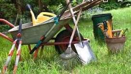 Limpio patios, techos,Mantenimiento atencion