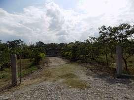 finca dos hectareas  con casa