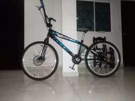Bicicleta GW CRUZEIRO o algún cambio?