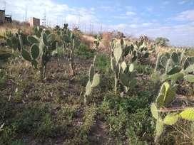 Se vende terreno en huatatas-Ayacucho