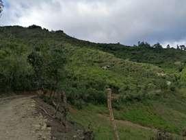 Se vende terreno de 17 hectáreas, para ganadería o agricultura