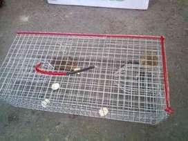 Jaula Trampa Para Ratas Ratones Pericotes Seguridad, Calidad Y Garantía
