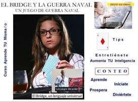 Bridge Aprende Tips Curs Tecnica Juego De Elite Kit X 33787