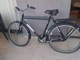 Bicicleta antigua enrique