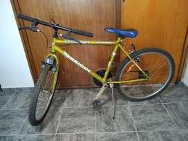 Bici Enrrique SIN USO! Remato !!