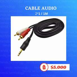 Cable audio 2X1