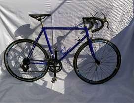 bicicleta de ruta  talle M 54cm  cambios shimano tourney  piñones shunfeng  plato y palanca fire bird  14 cambios
