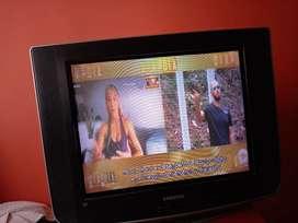 Televisor Samsung Slim 21'