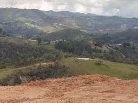 Lote de 1000 mts con vereda el potrero de San Vicente