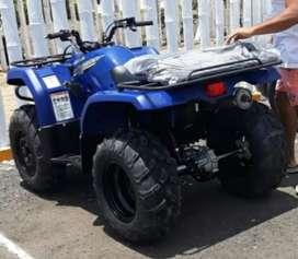 Cuatrimoto Yamaha Grizzly 350 2WD ( 4x2)
