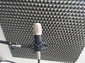 Micrófono Neewer Nw700 + Kit