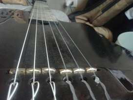 Vedo godin, guitarra sólida , con pastilla solida