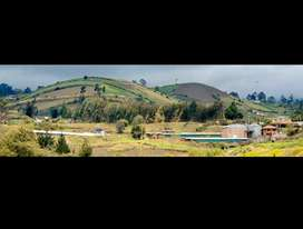 Avicola , Fabrica de balanceados , casa , huerta frutal , finca , propiedad , terreno , hacienda , granja