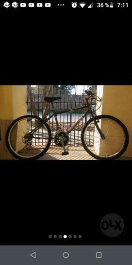 Bici 24 Rod