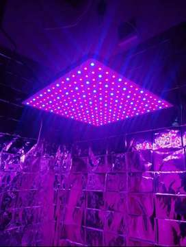 LUZ CULTIVO 300W LED (VEG/FLO)